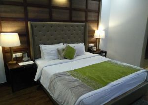 The Earl's Court Hotel, Nainital Room